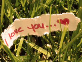 I Love You... by HaskinsJ