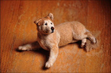 Eddy the Needle Felted Dog by nikkiburr