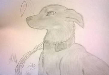 my dog.I tried. by Halo--Cat