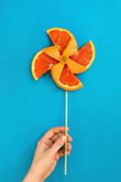 Summertime Pinwheel by dinabelenko
