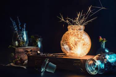Fire bloom by dinabelenko