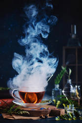 Enchanted tea with herbs and ferns by dinabelenko