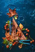 Autumn Geometry by dinabelenko