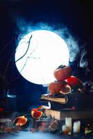 Harvest Moon by dinabelenko
