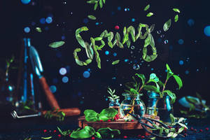 Spring and other words. Part 2 by dinabelenko