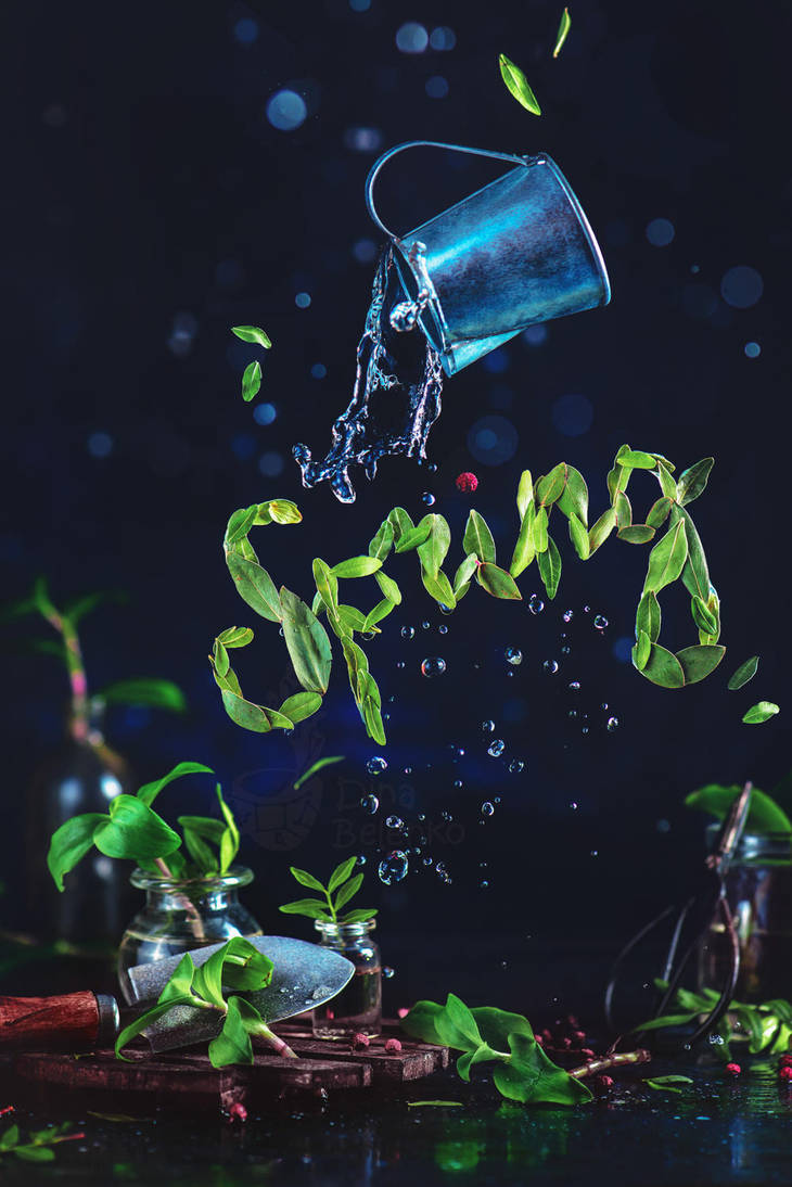 Spring and other words. Part 3 by dinabelenko