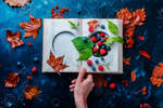 Summer Stash by dinabelenko