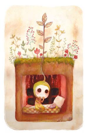Seed by Foyaland