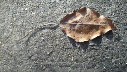 One little leaf by skyeyedangel