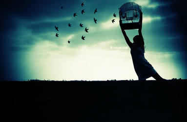 Free Birds by ByLaauraa