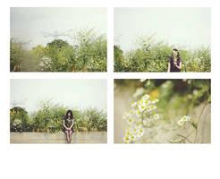 353.365 by ByLaauraa