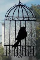 Birdcage I by AigneadhAigeann