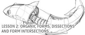 Lesson 2: Organic Forms, Dissections and Form In.. by irshadkarim