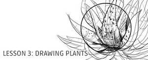 Lesson 3: Drawing Plants by irshadkarim