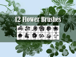 12 Flowers Brushes by xara24
