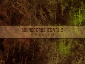 Grunge Brushes Vol. 5 by xara24