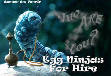 Eggninjas by dragona-star08