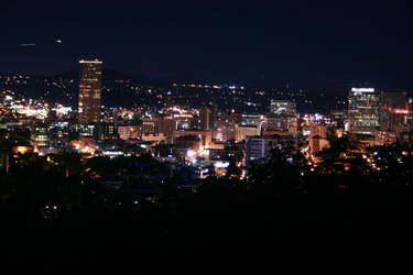 Portland at Night by Southwest
