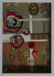 Rose by amacpherson