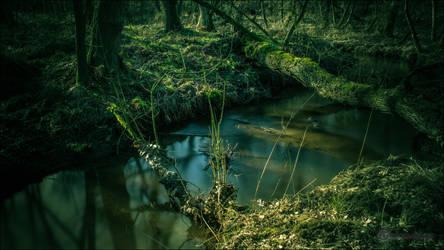Alhorner Fischteiche by db-photoblogDOTcom