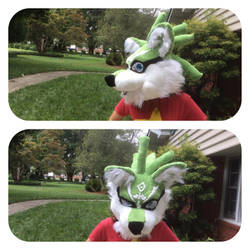 wolf link pics 2 by shibblesgiggles01