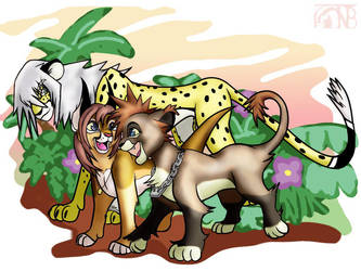 KH2 - The Destiny Island Cats by kompy