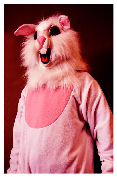 andy rabbit by emohoc