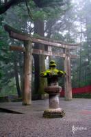 Zen in Japan by lady-iguana