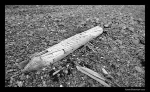 Drifted Away by adambarefoot