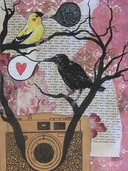 Bird Talk by m4g1c4lm3