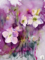 Fleurs by vogesen