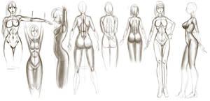 02 July - Anatomy by Pieterator