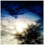 California sun by M-Curiosity