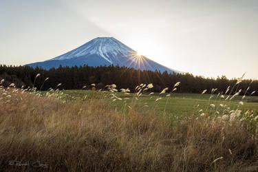 .:Mt Fuji II:. by RHCheng