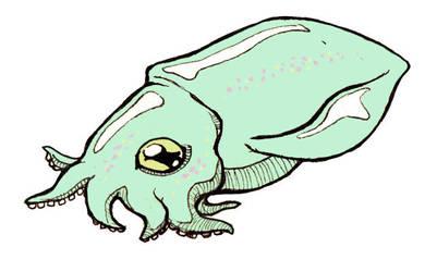 Cute Squid by Banvivirie