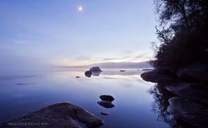 Foggy Dawn at Moruya by FireflyPhotosAust