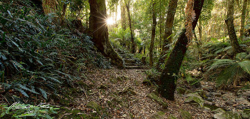 Mount Wilson by FireflyPhotosAust