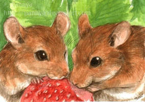 Strawberry Love by Pannya