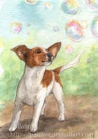Chasing Bubbles ACEO by Pannya