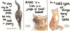 Cat Proverbs by Pannya