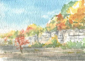 Autumn Cliff ACEO by Pannya