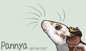 Spring Pannya ID by Pannya