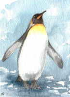 King Penguin ACEO by Pannya