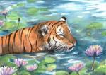 Amongst Lillies by Pannya