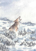Coyote's Winter Howl by Pannya