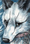 White Spirit ACEO by Pannya