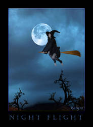 Night Flight by kalyre