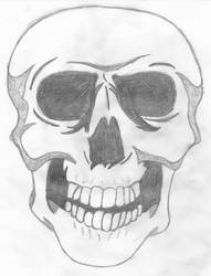 Skull drawing by McZlik