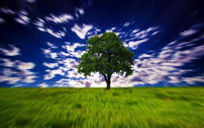 Hypno tree by ShangyneX
