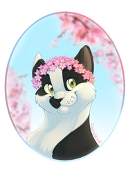 Commisson| Seasons: Spring by LaivaWolf